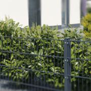 Grenzbebauung & Abstandsflächen - was muss ich bei der Bebauung beachten?